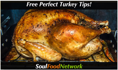 Perfect Chicken and Turkey tips and recipes free